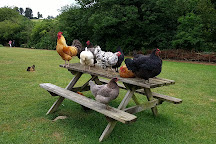 Hamptonne Country Life Museum, St. Lawrence, United Kingdom