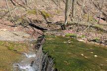 Mill Stream Run Reservation, Cleveland, United States