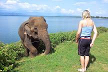 Gihan Tours Sri Lanka, Weligama, Sri Lanka