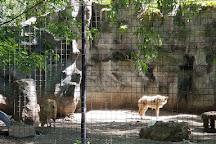 Zootah At Willow Park, Logan, United States