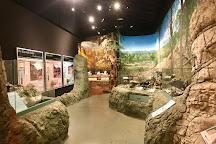Thomas Condon Paleontology Center, Dayville, United States