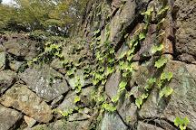 Hamada Castle Ruins, Hamada, Japan