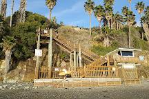Swami's Beach, Encinitas, United States