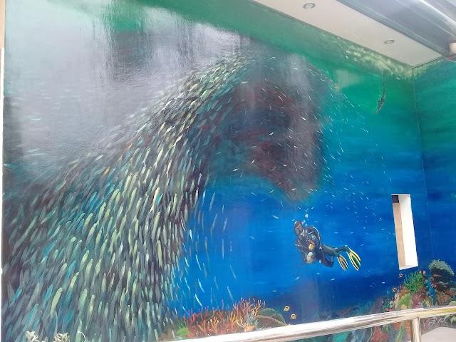 Sardine Run Wall Paint