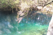 Leon Sinks Geological Area, Tallahassee, United States