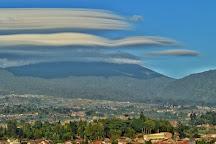 Mount Gede Pangrango National Park, Bogor, Indonesia