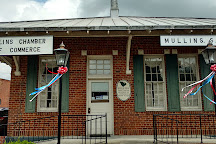 South Carolina Tobacco Museum, Mullins, United States