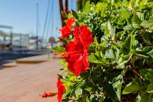 Marina Greenwich, Altea, Spain