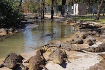 Crocodile Park Victoria Falls, Victoria Falls, Zimbabwe