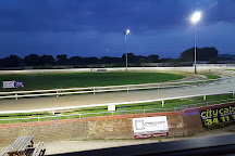 Peterborough Greyhound Stadium, Peterborough, United Kingdom