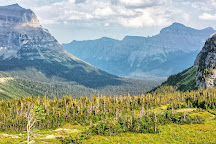 Logan Pass, Glacier National Park, United States