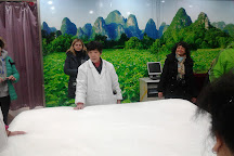 Shanghai Jiangnan Silk Museum, Shanghai, China