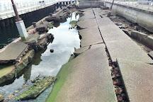 Port of Kobe Earthquake Memorial Park, Kobe, Japan