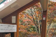 Mt. Rokko Arima Ropeway, Kobe, Japan
