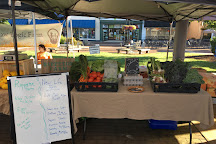 Downtown Hickory Farmers Market, Hickory, United States