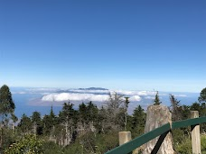 Polipoli Spring State Recreation Area maui hawaii