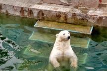 Novosibirsk Zoo, Novosibirsk, Russia