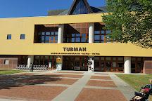 Tubman Museum, Macon, United States