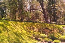 Bosque Colomos, Guadalajara, Mexico