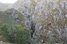 Cape Canopy Tour, Elgin, South Africa