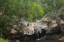 Kondalilla Falls, Montville, Australia