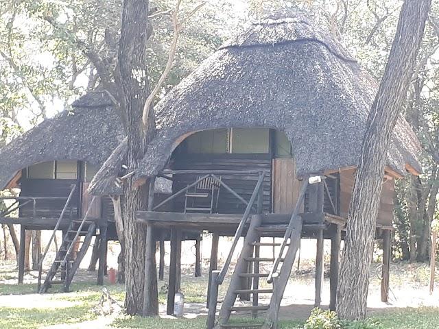 Tree Lodge at Sikumi