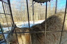 Ringtail Ranch and Rescue, Wainfleet, Canada