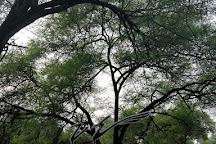 Van Vihar National Park, Bhopal, India