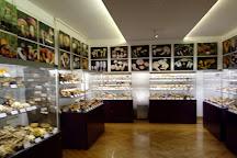 Mushroom Museum, Zagreb, Croatia