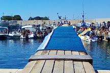 Hippocampus Sea Services, San Vito lo Capo, Italy