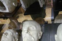 Hrdlickovo muzeum cloveka PrF UK, Prague, Czech Republic