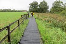 Wicken Fen National Nature Reserve, Ely, United Kingdom