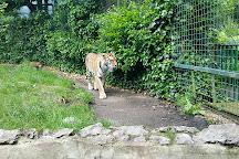 Paradise Wildlife Park, Broxbourne, United Kingdom