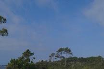 Jeff Friend Trail, Gulf Shores, United States