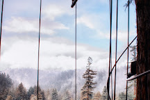 Sonoma Canopy Tours, Occidental, United States