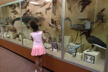Museum of York County, Rock Hill, United States
