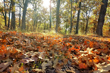 Pomme de Terre State Park, Pittsburg, United States