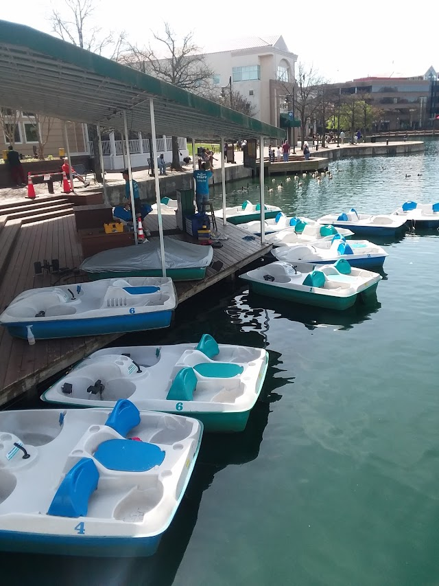 Dave's Paddle Boats