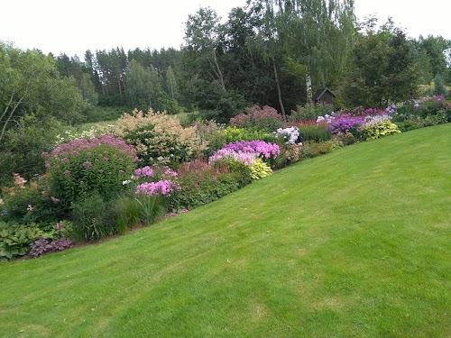 Palusalu aed