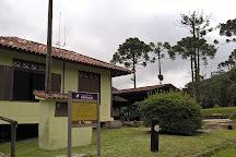 Estacao Ecologica de Bananal, Bananal, Brazil