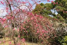 Heiwanomori Park, Ota, Japan