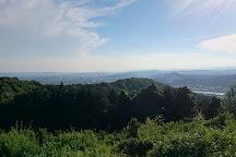 Tatsunokuchi Green Shower Forest, Okayama, Japan