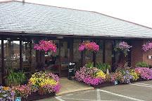 Plant World Gardens, Newton Abbot, United Kingdom