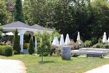 Mattebella Vineyards, Southold, United States