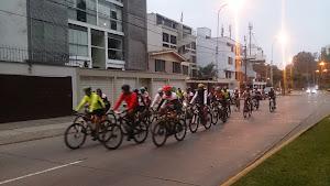 Silva Bikes 3