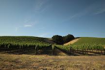 Niner Wine Estates, Paso Robles, United States