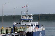 Ocean Explorations Whale Cruises, Tiverton, Canada