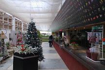 Orquidario Binot, Petropolis, Brazil
