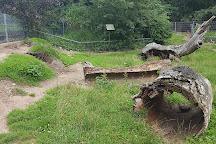 Wildpark Reuschenberg, Leverkusen, Germany