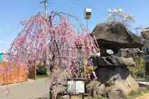 Hanamiyama Park, Fukushima, Japan